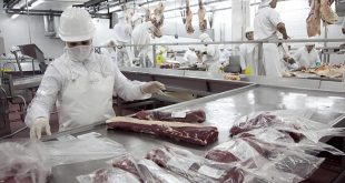 Sindicato de la carne