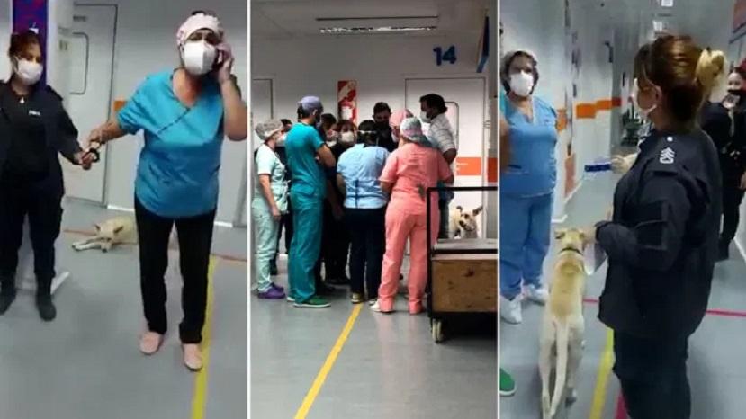 enfermera esposada