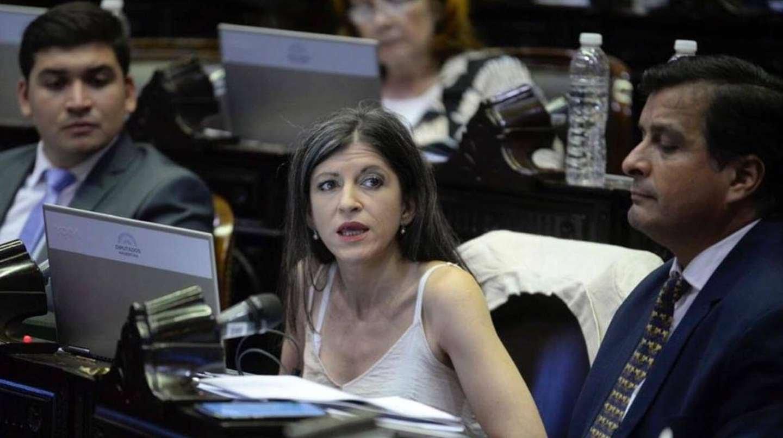 Diputada del Frente de Todos, Fernanda Vallejos